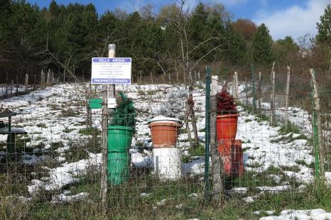Villa Argia Pesche coltivazione patata Turchesca