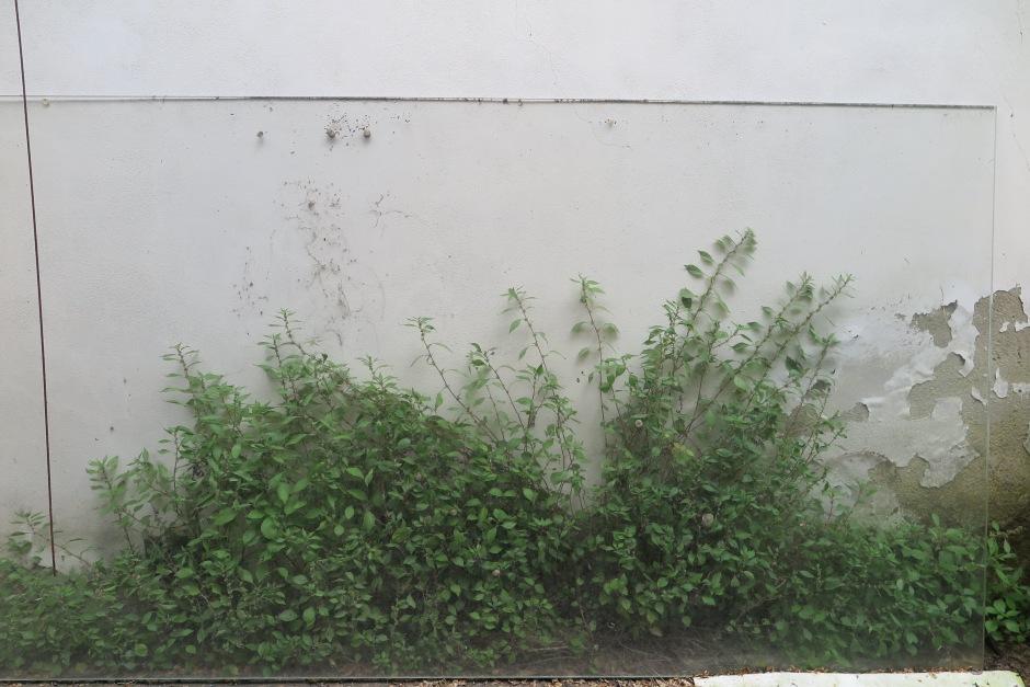 Pervaso andrea_d'amore jann_monel garden villa_romana .JPG03