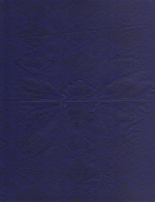 Carta carbone, impronte di denti, 21 x 27 cm